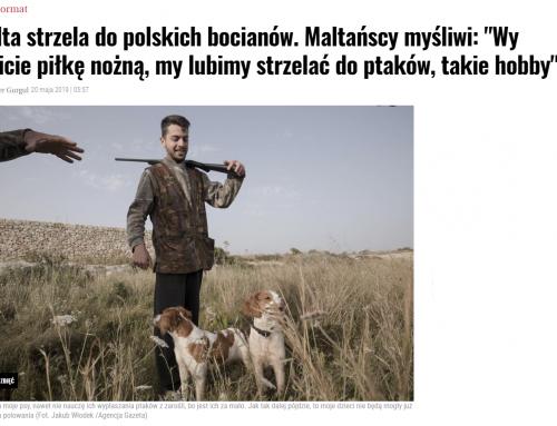 Artykuł o polowaniach na Malcie w Dużym Formacie