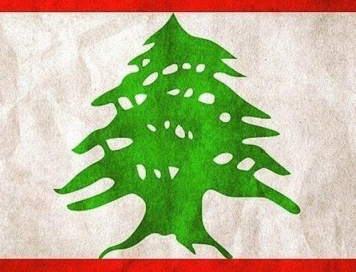 Liban – szansa na poprawę losu ptaków